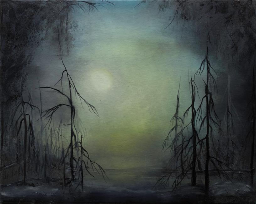 cavan swamp
